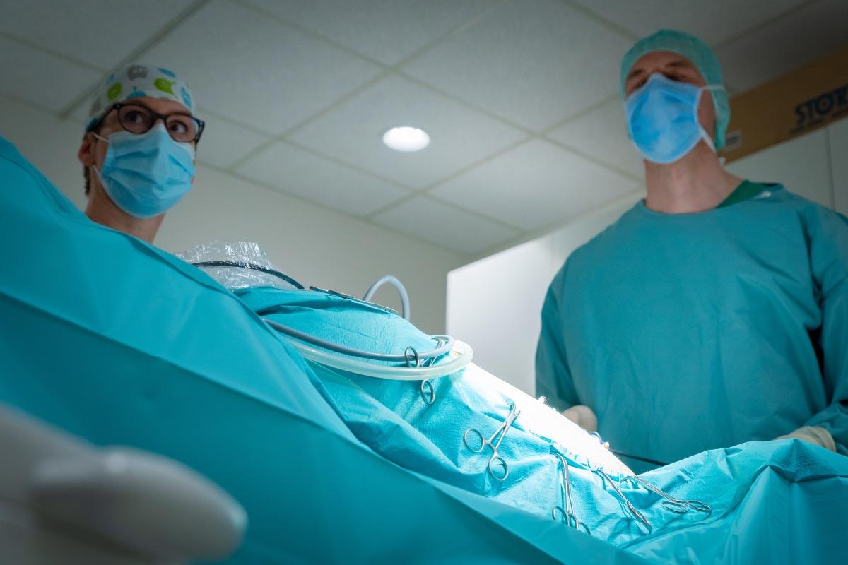 Chirurgie Curavet